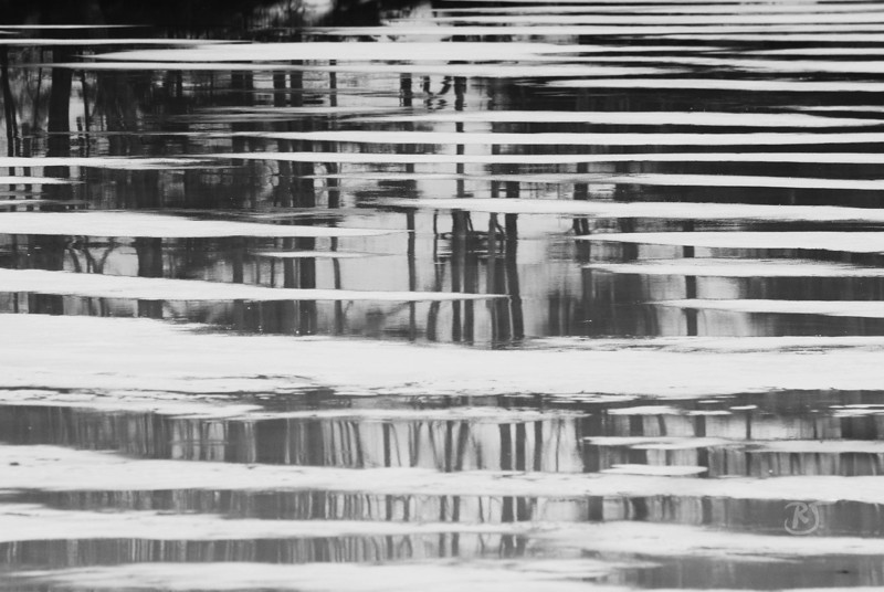 Day 333 - The Freezing Thaw<br /> <br /> Between the freezing rain and very thick fog with temps hitting around 8C/48F, the water saturated everything including the ice in the coves and lakes leaving these strips of water across the ice allowing for some awesome reflections.   <br /> <br /> By the way, the temp dropped to -13C/5F in only a few short hours.  Mother Nature messing (trying to keep it clean here)  with our heads. :)<br /> <br /> I recommend you view it full screen  (I put it as my desktop). I love the depth to it.<br /> <br /> Feb 28 2009