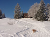 The site of my 40th birthday party.<br /> <br /> Les Sommets - Jura mountains, Switzerland