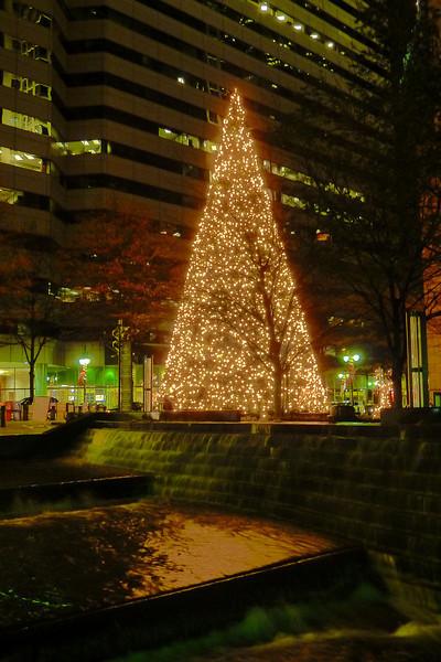 Charlotte Christmas Tree at Trade & Tryon