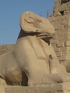 Ram Head - Sphinx (Karnak Temple) - Kimberly Collins