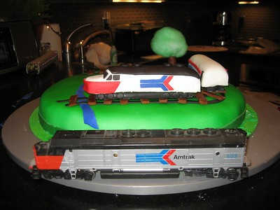 Craig's H0 scale model Amtrak train set was used as a reference