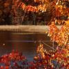 Mendon Ponds Park<br /> Mendon, NY