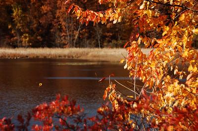 Mendon Ponds Park Mendon, NY