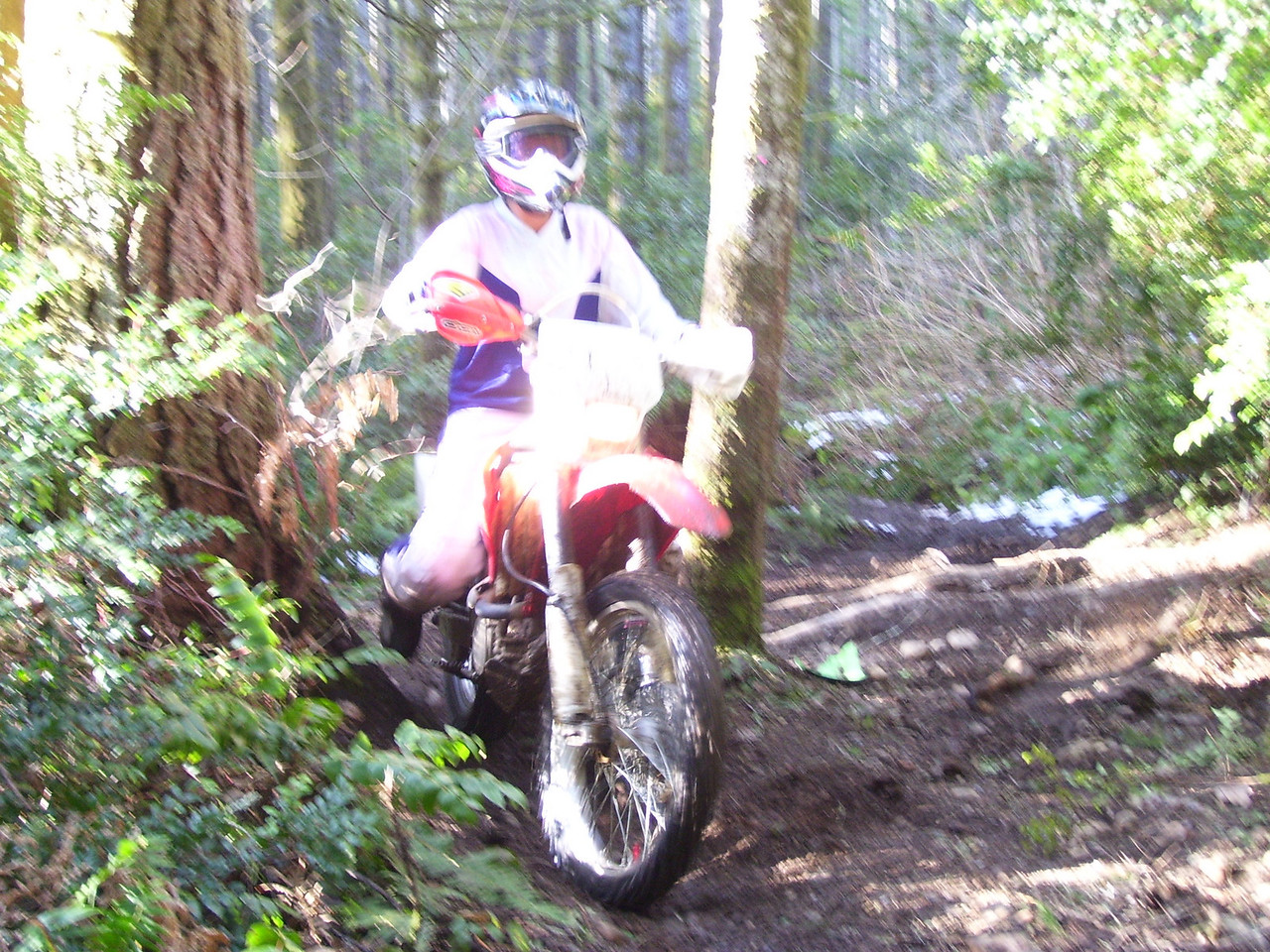Julie is an excellent rider. This shot is on the 1.9 mile trail going over a large series of exposed roots