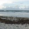 Ich habe am ganzen Strand nicht einen Stein gefunden - dafuer aber 2 Muscheln fuer Dich Mama die ich nach Boston bringen werde...