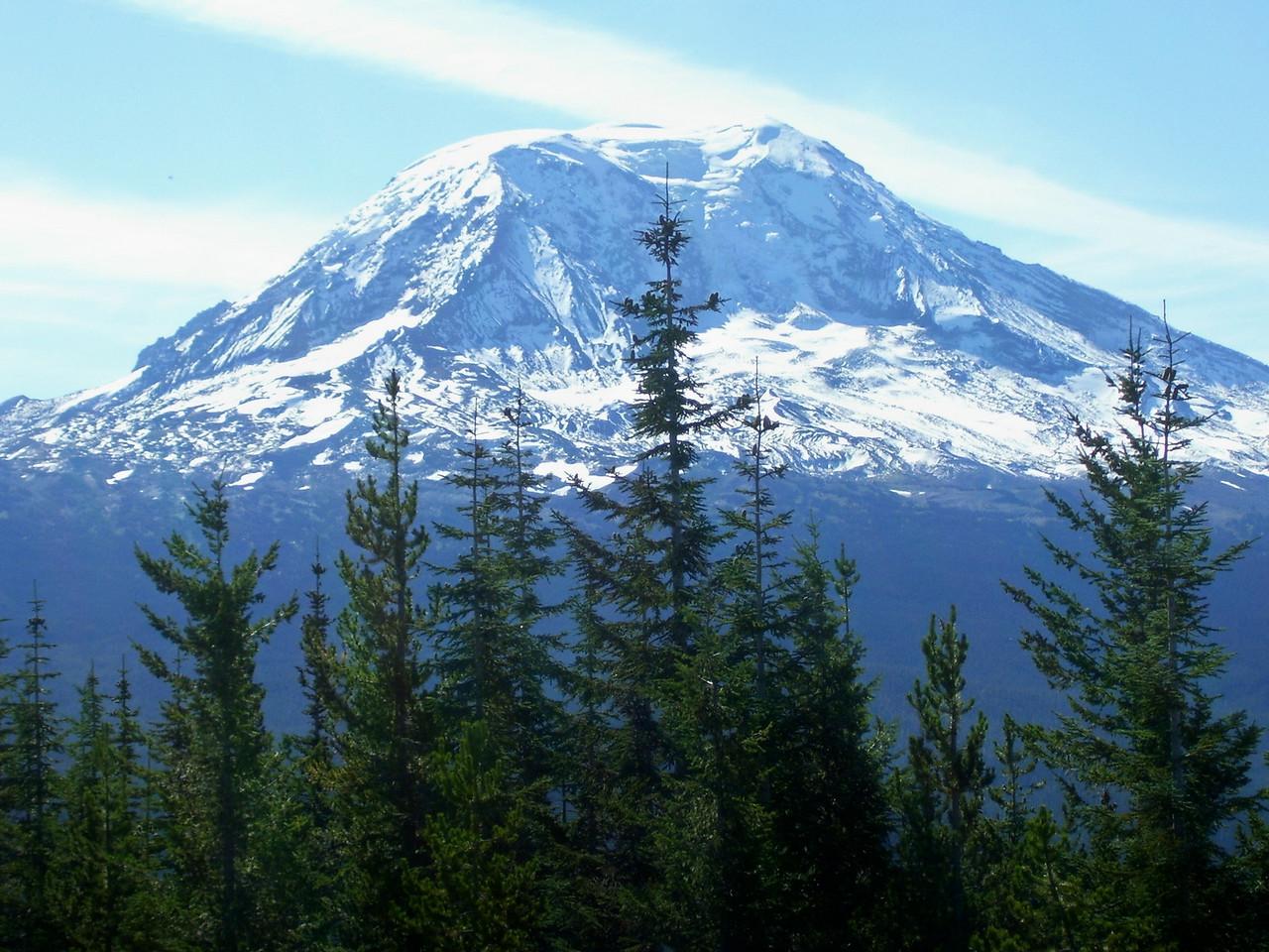 Mt. Adams from Green Mt.