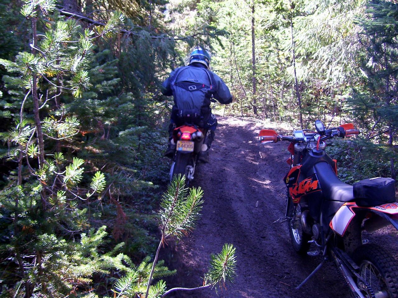 116 Trail
