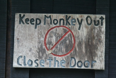 Monkeys haven't figured out doorknobs yet, I guess