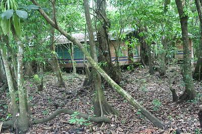 El Perico, a hotel in the swamp