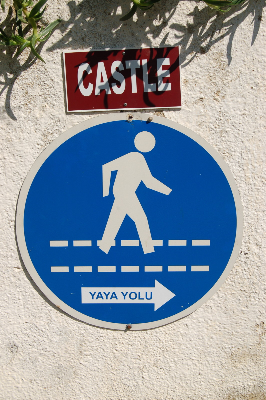 To the castle!