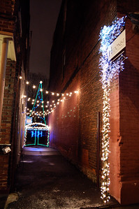 Hedonist Alley