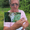 Missing feline: Virginia Noyd holds a photograph of her missing cat Katie. Katie went missing last year when the Noyds were travelling through Terre Haute on their way west.
