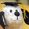 Doggie detai: Stuffed animal.