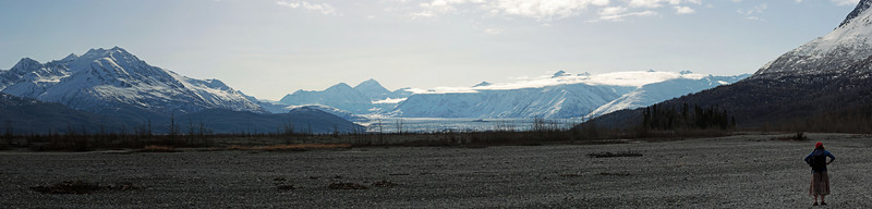 The Knik Glacier greets us as we round a bluff on the hillside and reach the straightaway.