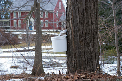 Make your own maple syrup.  the people who own this property also make honey.