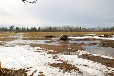 Lots of water from the melting snow and a lone boulder in the field.