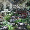 Beautiful Opryland Hotel in Nashville, TN