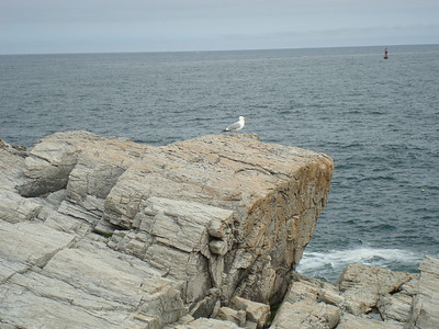 At Portland Head Light