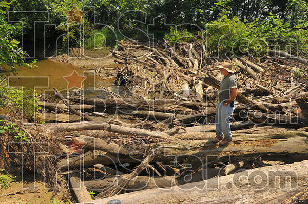 Jammed: Eddy Adams, District Conservationist for the Natural Resources Conservation Service looks over a massive log jam in Honey Creek west of US 41last August. At low volume the water can flow under the jam, in periods of wet weather and high volume the water flows around and over, cutting into the bank, threatening crop land and levees.