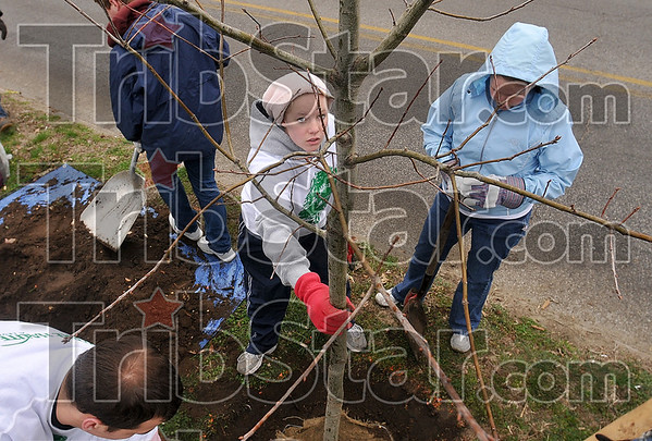 Tribune-Star/Joseph C. Garza<br /> Centered: Terre Haute North senior Katie Guell helps align a new planted tree as she works with volunteers near Collett Park Saturday.