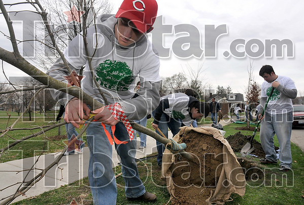 Tribune-Star/Joseph C. Garza<br /> Beautifying Collett Park: Rose-Hulman mechanical engineering student Kurtis Muehlenkamp of Cincinnati removes the tags off a tree as prepares to help fellow students plant it at Collett Park Saturday.