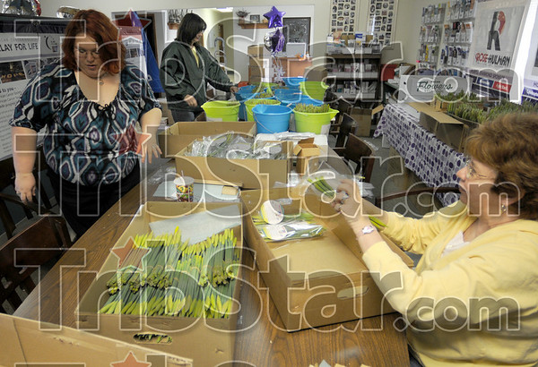 Packaging: Cancer Society employees Jessica Dardeen, Julie Hansen and Jenet Henderson package daffodils Monday afternoon at the American Cancer Society headquarters in Terre Haute.