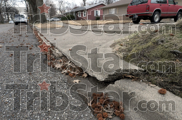 Cracked: A section of sidewalks and curbing along south 31st street shows major damage from tree roots.