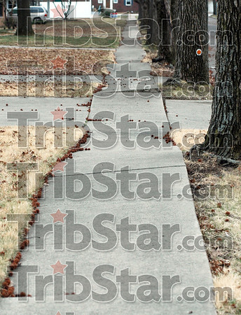 Roller coaster: The sidewalk along south 31st street between Poplar and Ohio streets is in dire need of replacement.