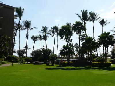 Maui Condo