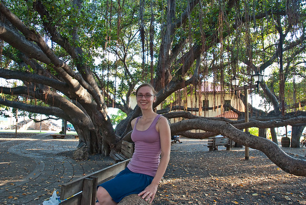 The Banyan tree in Lahaina. Pretty awesome tree!