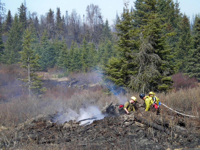 Construction and land clearing often lead to piling of debris in giant mounds, which make very deep hotspots when a fire rolls through.  Here, the crew mops up a big one.
