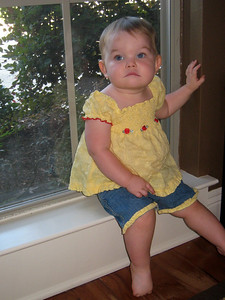 Hanging out on the window by Mommy