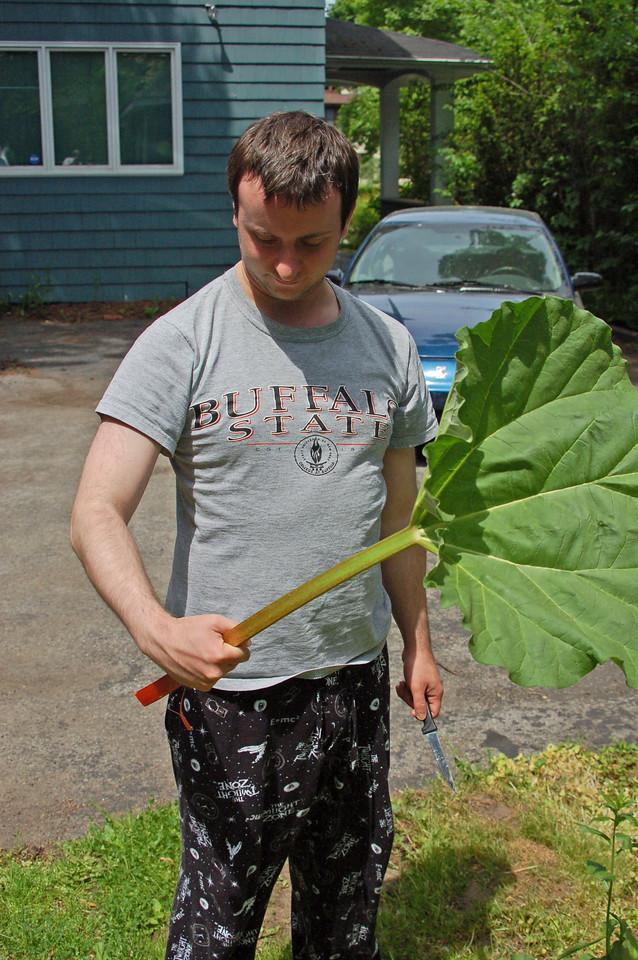 Adam and the Rhubarb