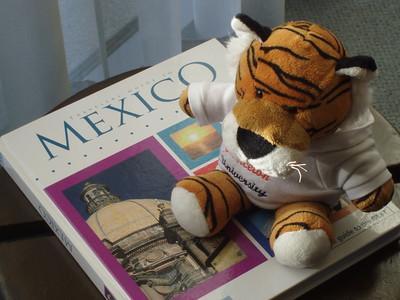 PJ in Mexico-Imani Joseph