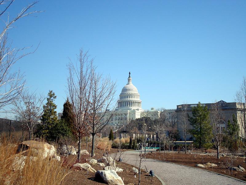 U.S. Botanic Garden (nothing like a garden in the dead of winter)