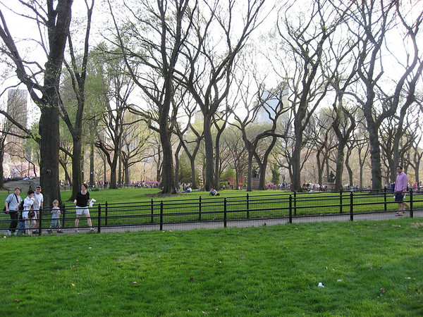 It was amazing out in NYC, so we went to central park to celebrate with a picnic! The trees were just blooming and super pretty
