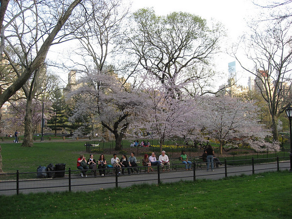 NYC w/Jaime (2009-04-18 )