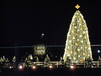 National Christmas Tree at White House Ellipse