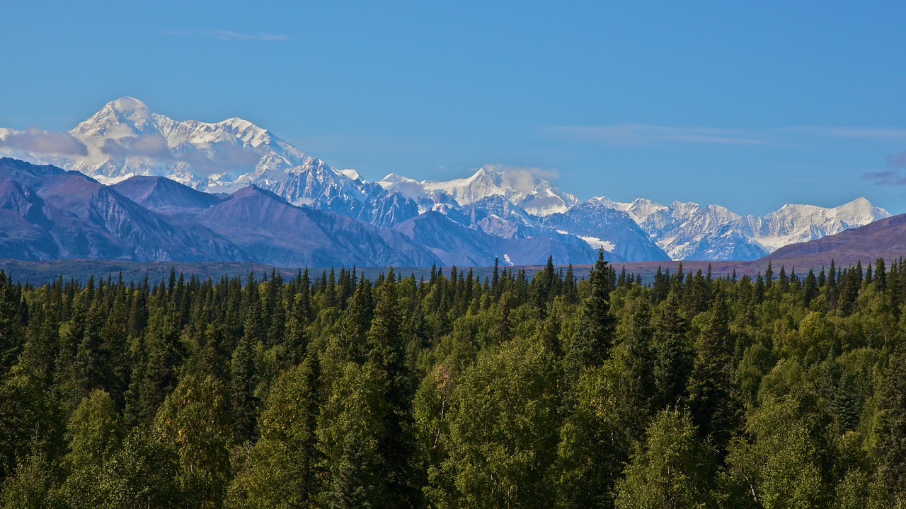 (Some of) Mount McKinley as seen from the railway. At this point we were about 60 miles from the mountain's peak. McKinley is the highest mountain in North America.