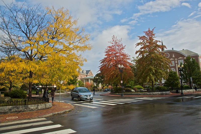 The day I visited Cambridge (Massachusetts) there were showers, but many of the trees were very autumnal.