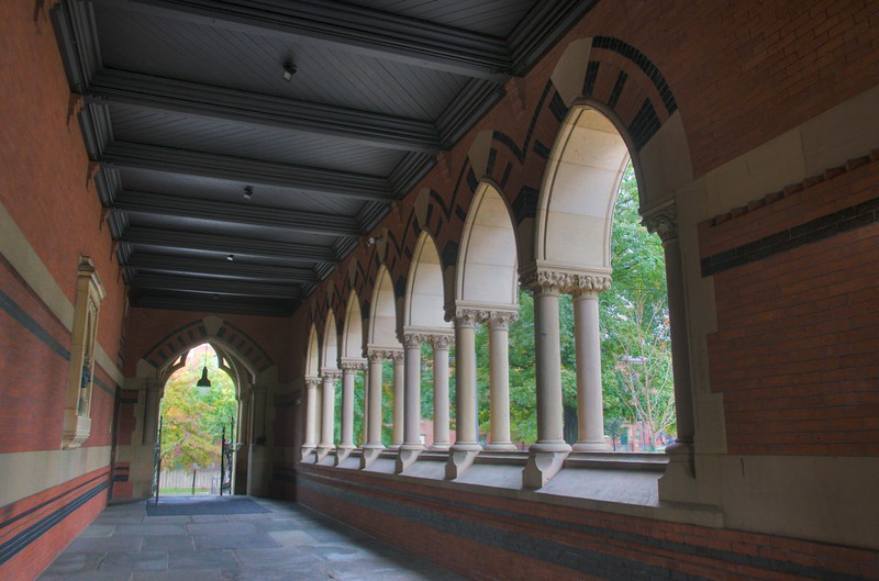 A blood-and-bandages cloister at Harvard.