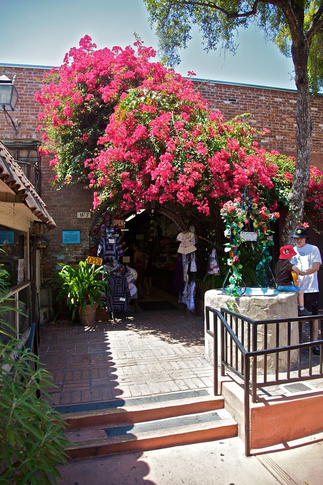 A shop in the Pueblo de Los Angeles surrounded with flowers.