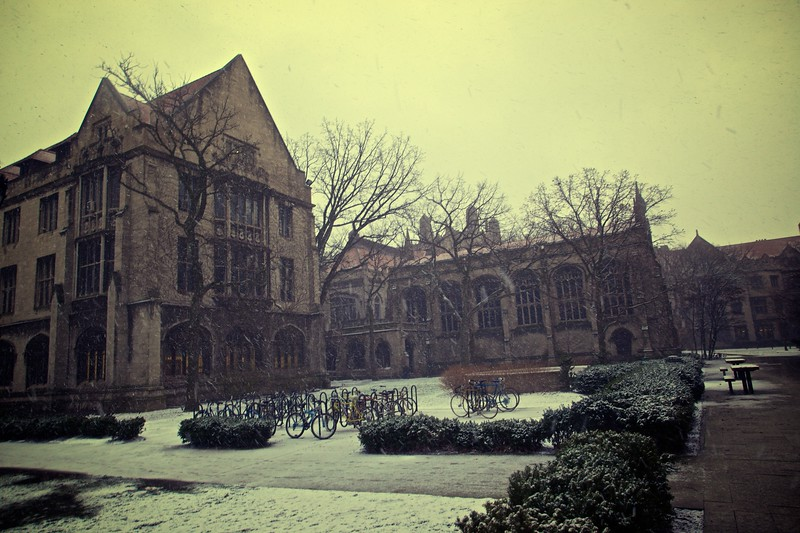 Snow falling at the Oriental Institute of the University of Chicago.