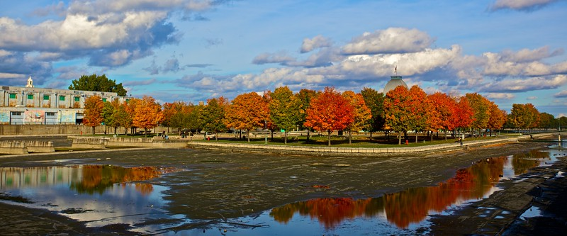 Autumn colours in Montreal.