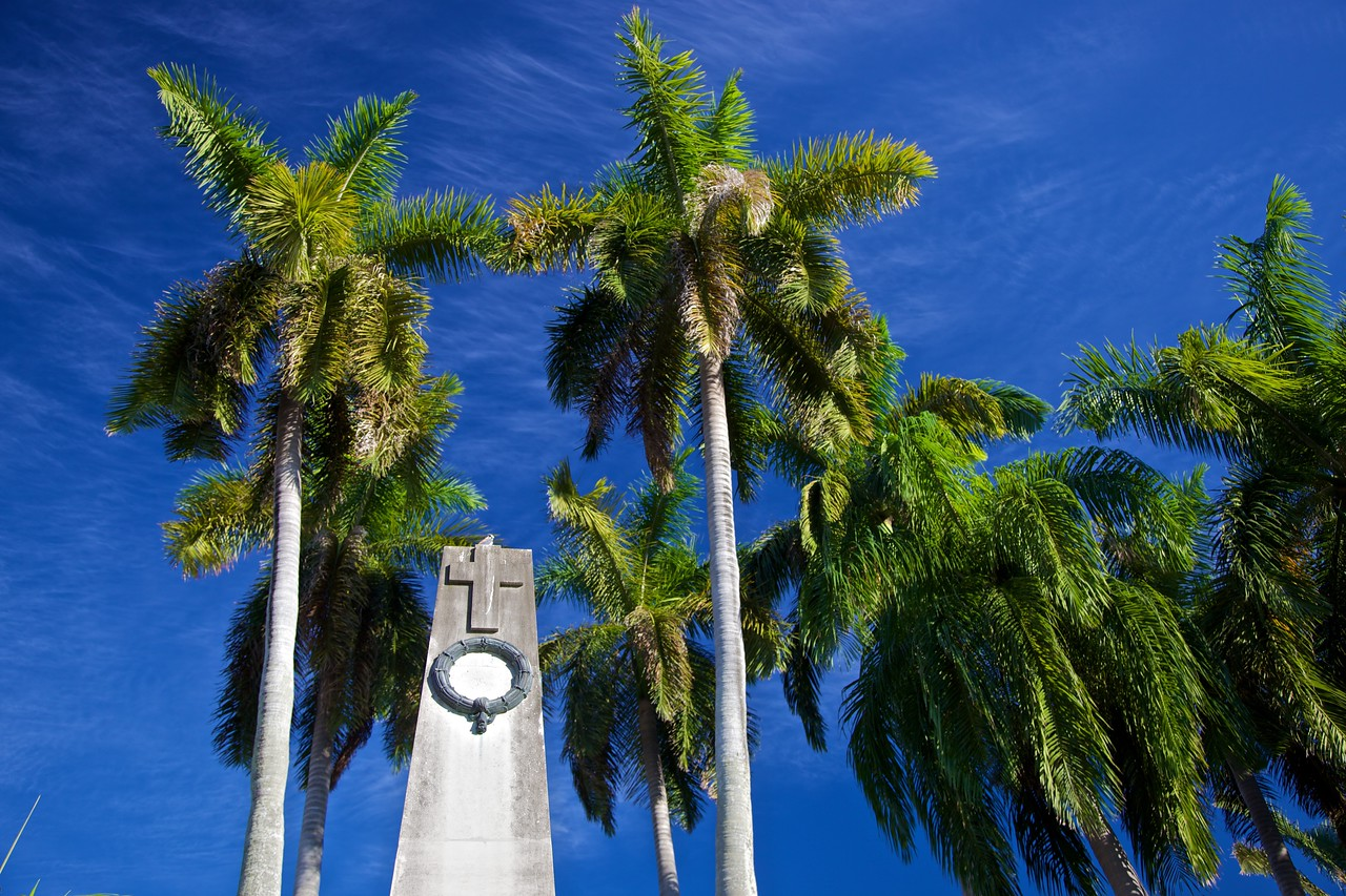 Palm trees and the top of the war memorial.