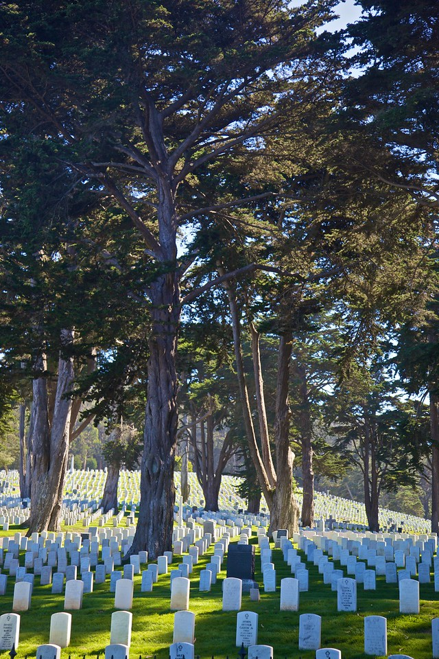 A cemetery in San Francisco.