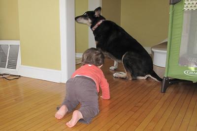 haha...gonna get you dog!!