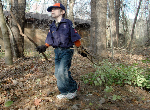 Removal: Cub Scout Christian Armstrong carries some honeysuckle branches to a disposal pile Saturday morning at Dobbs Park. Several area Cub Scout packs participated event.