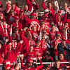 Tribune-Star/Joseph C. Garza<br /> First down, Lions!: Marshall fans celebrate a first down by the Lions Saturday during the team's semifinal game against Maroa-Forsyth Saturday at Marshall.