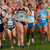 Tribune-Star/Joseph C. Garza<br /> A good start: Colorado's Jenny Barringer leads the pack during the first half of the women's 6,000-meter race of the NCAA Division I Championships Monday at the LaVern Gibson Championship Cross Country Course.